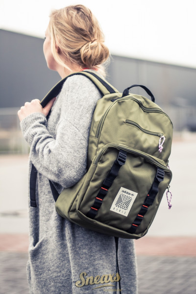 ADIDAS ARTIC BACKPACK (DH3269)